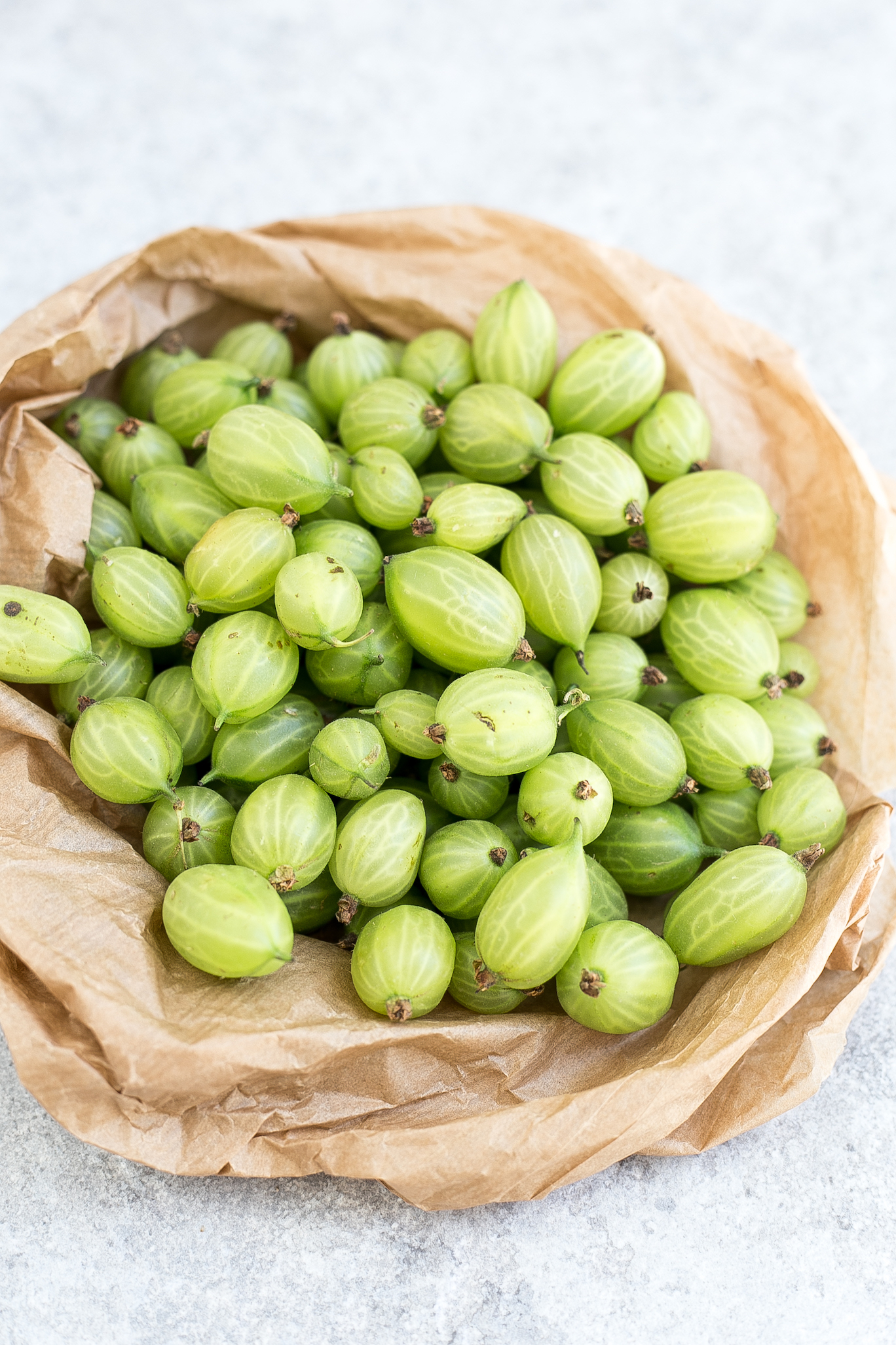 Brown bag and gooseberries