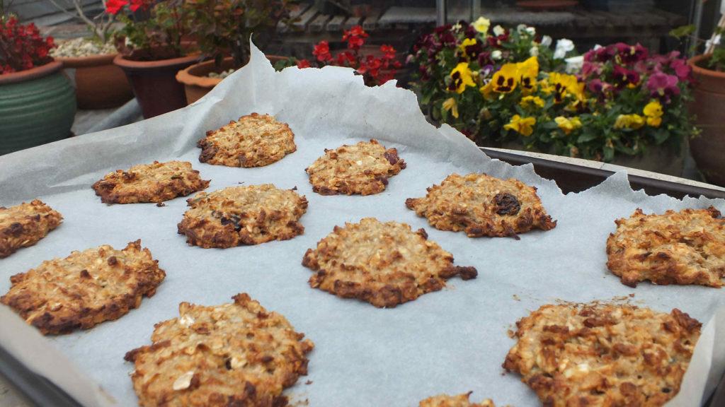 one bowl vegan peanut butter cookies