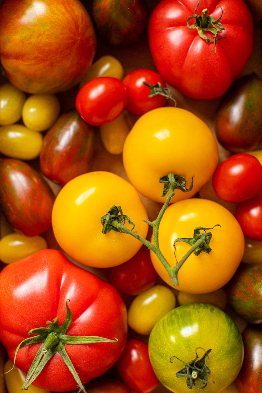 Close up tomatoes